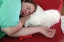 (Svenska) Efter två dygn med hemkommen valp är man trött…