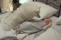 Buffy hälsar på bebis