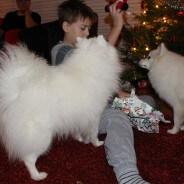 Julklappar, julmys och jul, jul, jul!