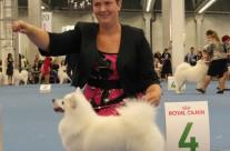 Jag och Aura på World Dog Show 2014