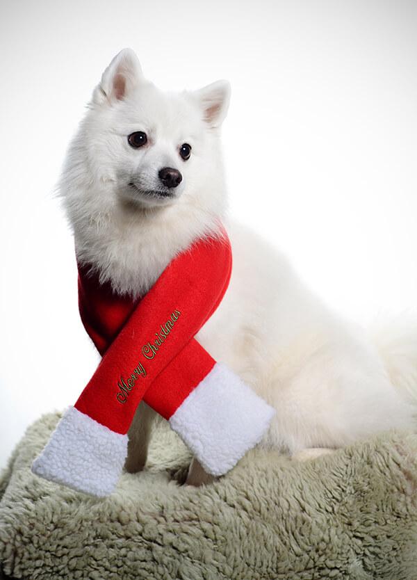 God Jul önskar Aura!