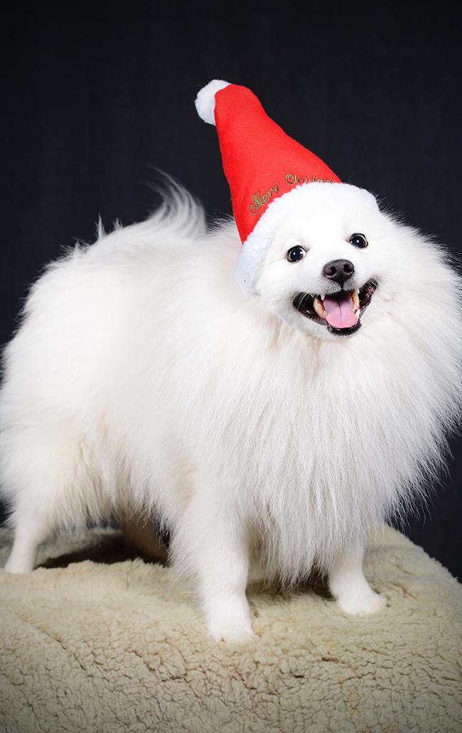 God Jul önskar Hiro!