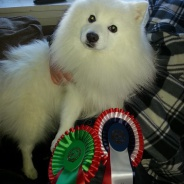 Ny norsk champion!
